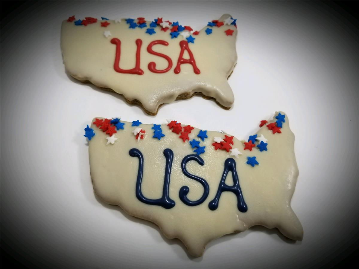 USA Maps -  Tray of 10