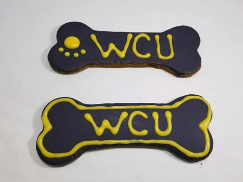 Custom/WCU-Options.jpg